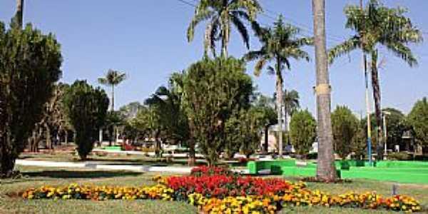 Imagens da cidade de Rubiácea - SP