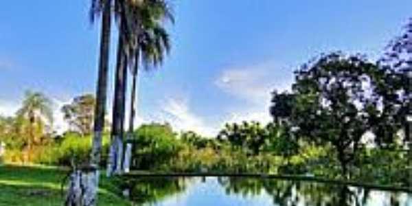 Lagoa na Chácara da Igreja Assembléia de Deus-Foto:Aurora Trench