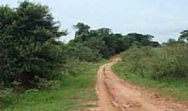 Ruilândia - Estrada de terra-Foto:abram.