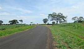 Ruilândia - Estrada para Ruilândia-Foto:abram.