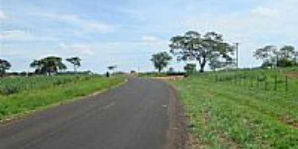 Estrada para Ruilândia-Foto:abram.