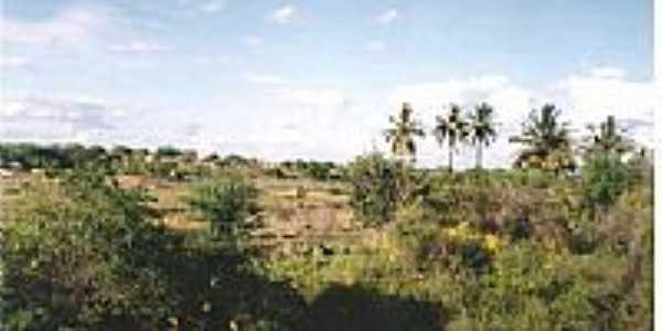 Área rural-Foto:ELI FILHO