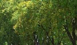 Salto Grande - Orla da Prainha em Salto Grande-SP-Foto:whelighton