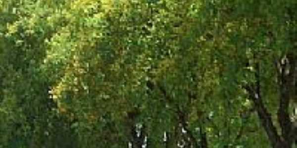 Orla da Prainha em Salto Grande-SP-Foto:whelighton