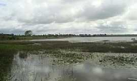 Junqueiro - Junqueiro-AL-Lagoa no Bairro Retiro,margeada por junco-Foto:www.wikialagoas.al.