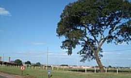 Santa Cruz das Palmeiras - Vista da cidade-Foto:LPSLPS