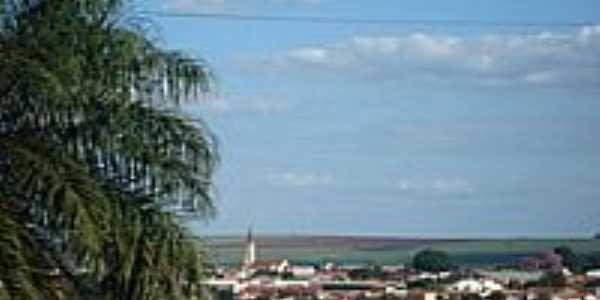 Vista parcial-Foto:LPSLPS