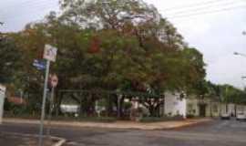 Santa Gertrudes - Praça do Jardim com Prefeitura ao fundo, Por Francisco