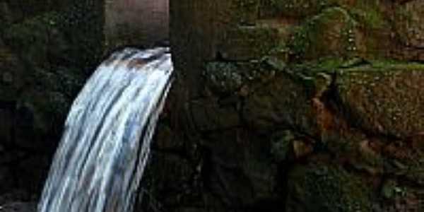 C�rrego da Gruta no Parque Estadual Vassununga em Santa Rita do Passa Quatro-SP-Foto:Emerson R. Zamprogno