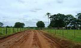 Santana da Ponte Pensa - Estrada rural-Foto:lauzynha89