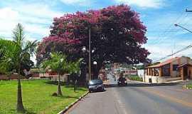 Santo Antônio de Posse - Imagens da cidade de Santo Antônio de Posse - SP