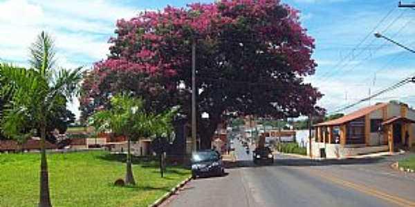 Imagens da cidade de Santo Antônio de Posse - SP