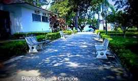 Santo Antônio do Jardim - Santo Antônio do Jardim-SP-Praça Siqueira Campos-Foto:Regina Tessarini