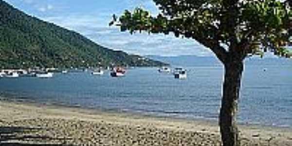 São Francisco da Praia-SP-Praia de São Francisco-São Sebastião-Foto:marlene fagundes