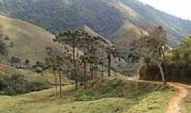 São José do Barreiro - Trilha da Pedra da Bacia  em São José do Barreiro-SP-Foto:J. Augusto