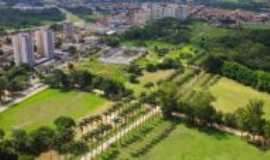 São José dos Campos - Parque da Cidade e suas palmeiras imperiais, Por Josefa Lacerda