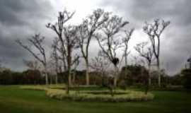 São José dos Campos - Parque da Cidade - São José dos Campos SP, Por Edemar Carlos Hebling - SJCampos SP
