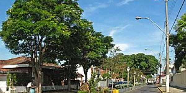 São Pedro-SP-Avenida na entrada da cidade-Foto:Eduardo Dantas