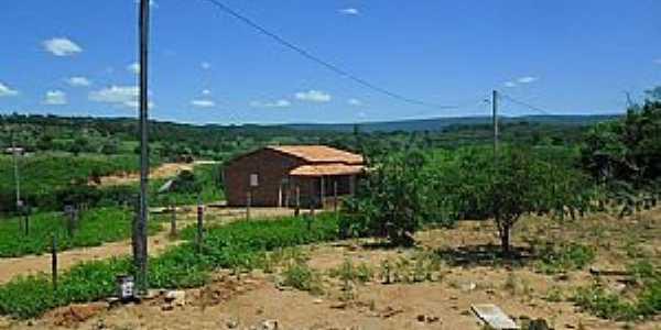 Riacho de Santana-BA-Comunidade de Laranjeira-Foto:Dênis Santana