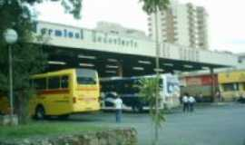 São Roque - Terminal Rodoviário, Por Antonio Cícero da Silva(Águia)