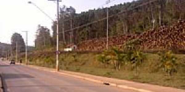 Estação São Silvestre-Foto:tomatebassman