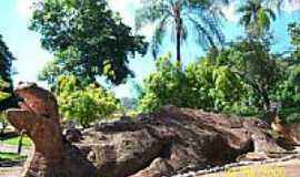 São Simão - Criatividade em pedra-Foto:Semeão.