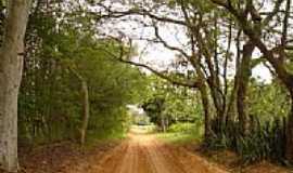 Sapezal - Antiga estrada de Sapezal-Foto:wilspavier