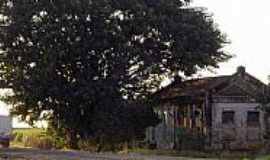 Sodrélia - Imagens do distrito de Sodrélia - SP