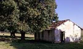 Sumar� - Imagem de �rea rural de Sumar�-SP-Foto:MMedinaBR