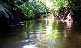 Taiaçupeba - Rio Itatinga, no Parque das Neblinas