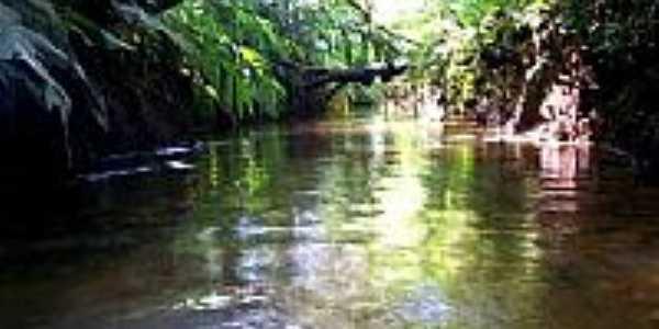 Rio Itatinga, no Parque das Neblinas