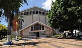 Tambaú - Tambaú-SP-Santuário N.Sra.Aparecida do Padre Donizetti-Foto:S Vick