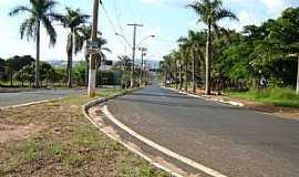 Taquaritinga - Trevo de Acesso à Taquaritinga Pela Av. Carlos de Brito  - por Umberto Moreno