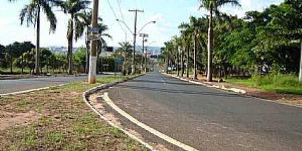 Trevo de Acesso à Taquaritinga Pela Av. Carlos de Brito  - por Umberto Moreno