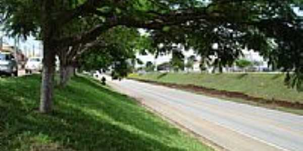 Rodovia Francisco Alves Negão-Foto:balves14