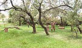 Teodoro Sampaio - Teodoro Sampaio-SP-Jardim do Folclore-Foto:Jômer