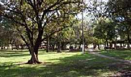 Termas de Ibir� - Bosque por jducatti