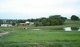 Urupês - Panorama