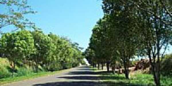 Entrada de Vale Formoso-Foto:eufrasio