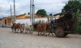 Rio Real - Carro de boi, Por cassivaldo