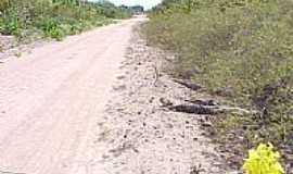 Apinajé - Chegando em Apinajé-Foto:jlscopel