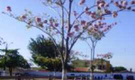 Araguaína - Parque de Exposições de Araguaina, Por Sabrynna