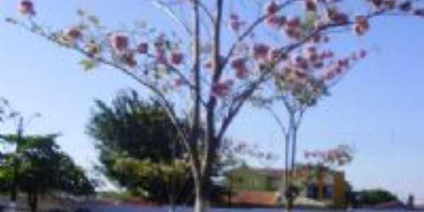 Parque de Exposições de Araguaina, Por Sabrynna