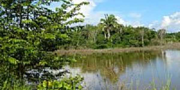 Paisagem e o Rio Tocantins em Baba�ul�ndia-TO-Foto:Janaina Cirqueira