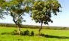 Chapada da Natividade - Paisagem-Foto:novafronteiraagro