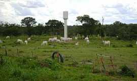 Crixás do Tocantins - Crixás do Tocantins-TO-Fazenda de gado-Foto:www.mfrural.com.br