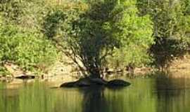 Jaú do Tocantins - Paisagem do Rio Santa Tereza-Foto:RioPreto
