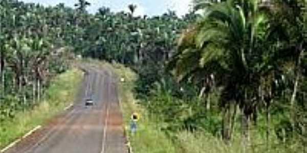 Estrada-Foto:mabnacional