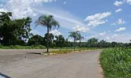 Novo Alegre - Entrada norte-Foto:Dimas Justo