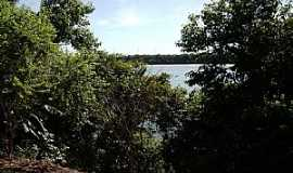 Peixe - Peixe-TO-Vista do Rio Tocantins-Foto:Marcio Veronese